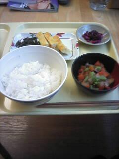hayashi004_04.jpg